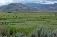 Razor Creek Ranch