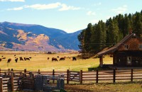 Rozman Ranch