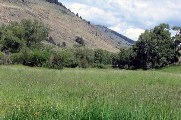 Robbins Ranch