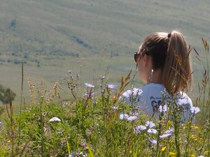 Indulge in the acts of noticing, visual art and writing in Conversations in Wildflowers Saturday, July 8